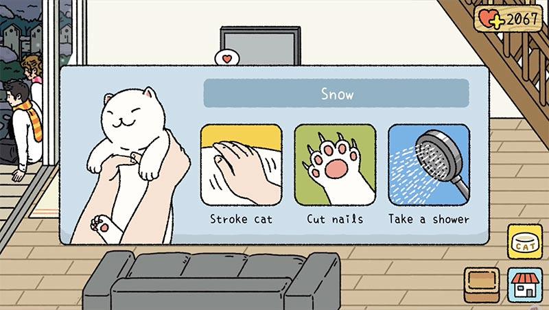 Dành thời gian tắm, cắt móng và vuốt ve mèo